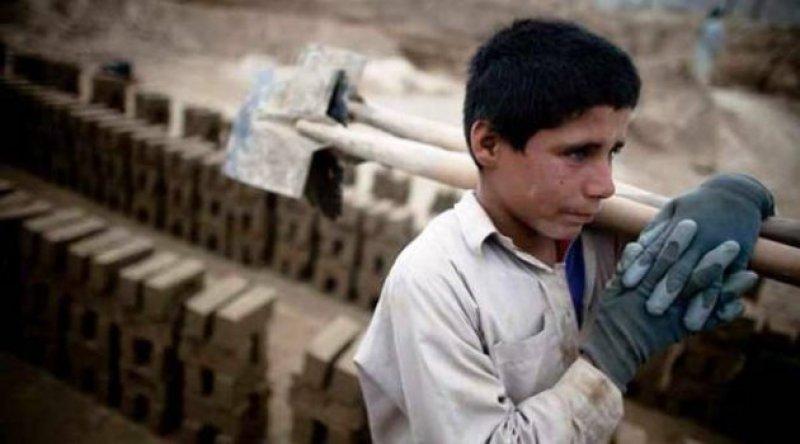 Çocuk işçilerin sayısı 20 yılda ilk kez arttı