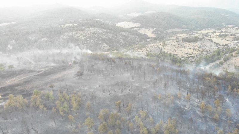 Çanakkale'deki orman yangınında 30 hektarlık alan zarar gördü
