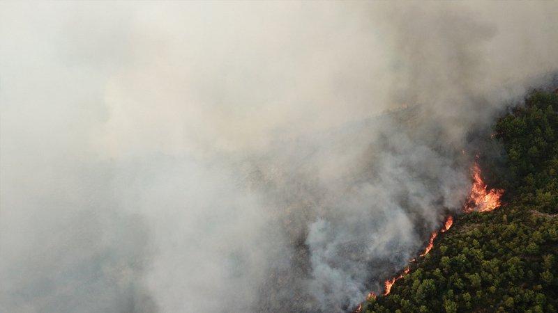 Türkiye'de 2020 yılında 29 bin 487 futbol sahası büyüklüğündeki ormanlık alan yandı!